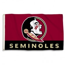 Florida State Seminoles 3'x 5' College Flag