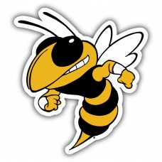Georgia Tech Yellow Jackets 12-inch Vinyl Magnet