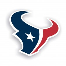 Houston Texans 12-inch Vinyl Magnet