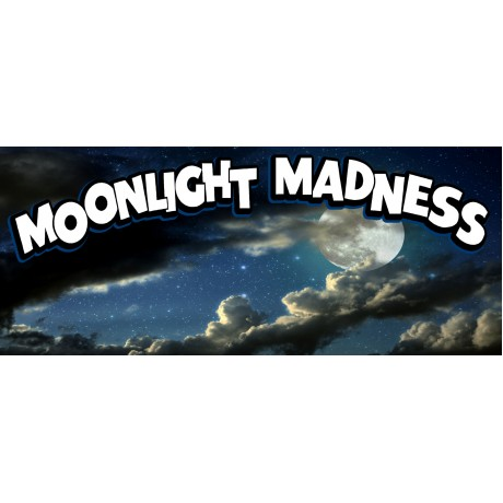 Moonlight Madness 2.5' X 6' Vinyl Business Banner