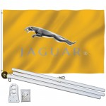 Jaguar Gold 3' x 5' Polyester Flag, Pole and Mount