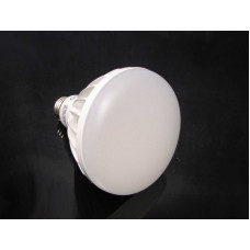 Dimmable 14 Watt LED Light Bulb