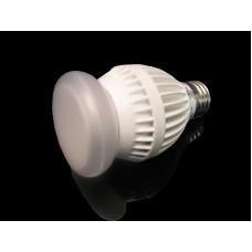 Dimmable 12 Watt LED Light Bulb