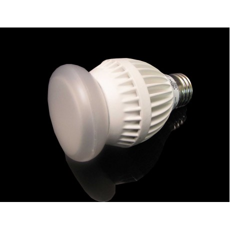 Dimmable 12 Watt LED Light Bulb