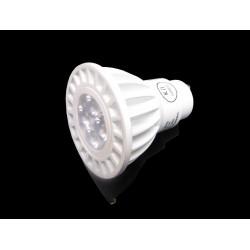 5 Watt LED Light Bulb