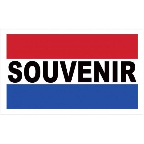 Souvenir 2' x 3' Vinyl Business Banner