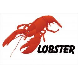 Lobster White 2' x 3' Vinyl Business Banner