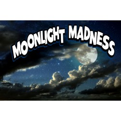 Moonlight Madness 2' X 3' Vinyl Business Banner