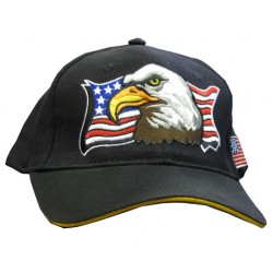American Eagle Black Embroidered Hat