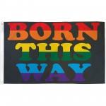 Born This Way Rainbow 3' x 5' Flag