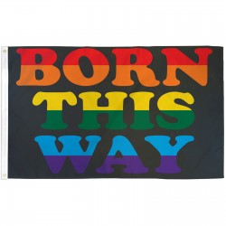 Born This Way Rainbow 3' x 5' Polyester Flag