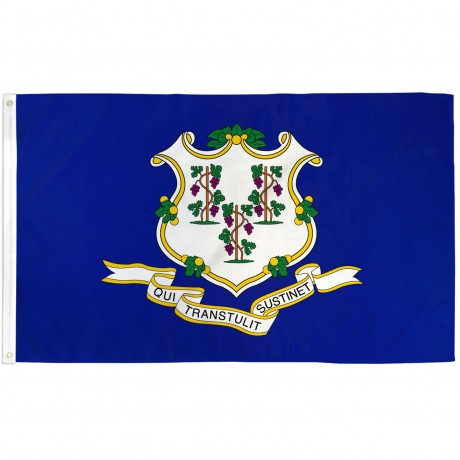 Connecticut State 2' x 3' Polyester Flag