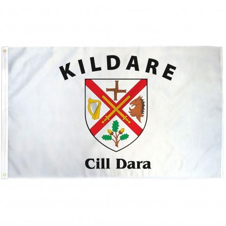 Kildare Ireland County 3' x 5' Polyester Flag