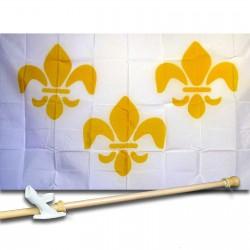 Fleur de Lis 3 White 3'x 5' Polyester Historical Flag, Pole And Mount.