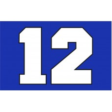 Seattle Seahawks BIG 12 3'x 5' NFL Flag