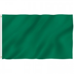 Solid Green Nylon 2'x 3' Flag