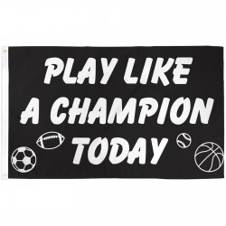 Play Like A Champion Today 3'x 5' Flag