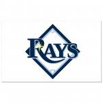 Tampa Bay Rays 3'x 5' Baseball Flag