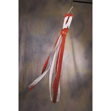 Wisconsin Badgers Wind Sock