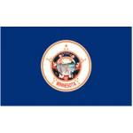 Minnesota 3'x 5' State Flag